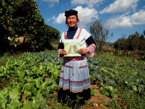 Reducing the use of pesticides in Heininggou Farmer Shaolan Zhang