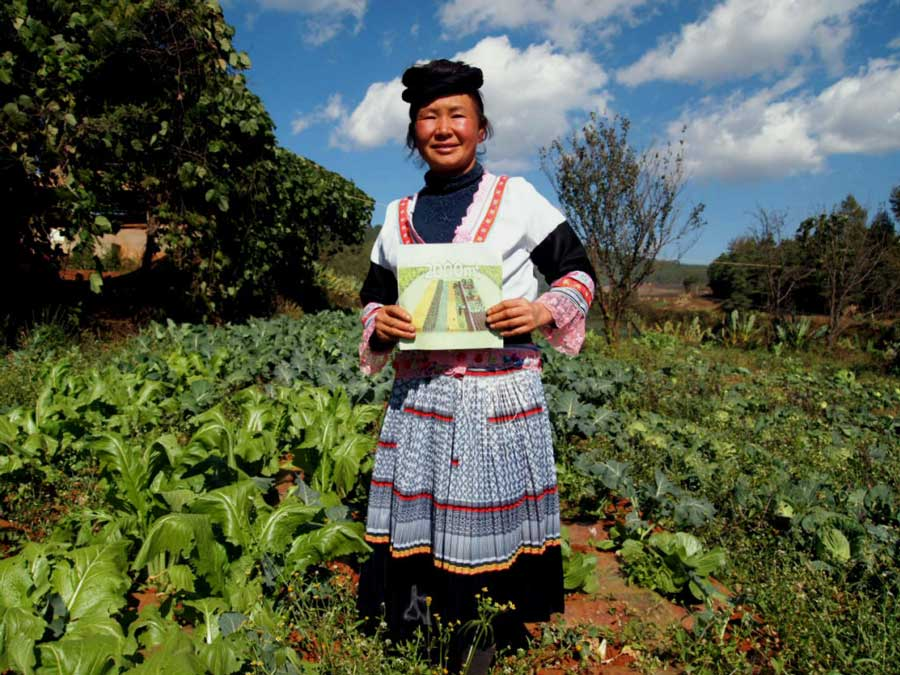 Transitioning from high to low pesticide-use in a Heinigou farming community